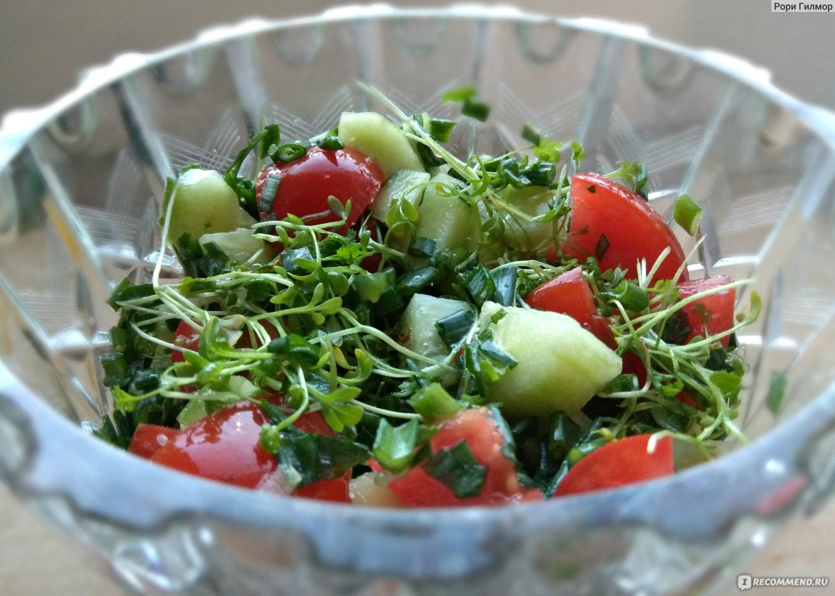 Кресс-салат: польза и вред, что это такое и с чем его едят, микрозелень на подоконнике, когда срезать и как употреблять, как готовить, применение