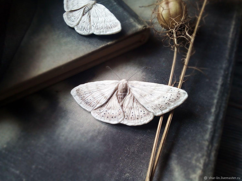 Ночные мотыльки: как выглядят и чем питаются