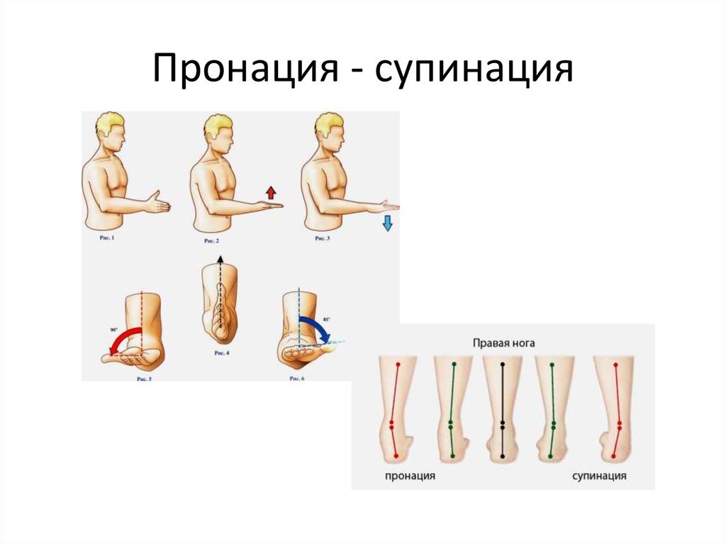 Что такое пронация и супинация стопы, как определить ее тип?