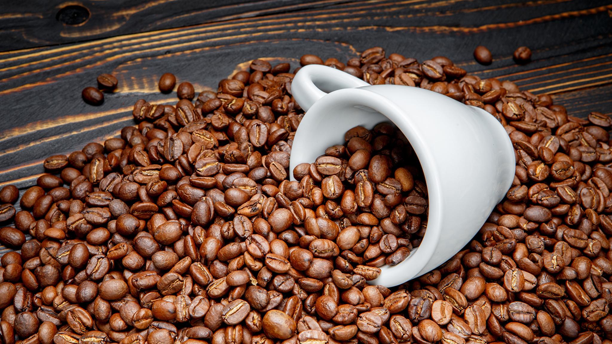 Кофеин, история его открытия. получение, физические и химические свойства кофеина. содержание кофеина в кофе.