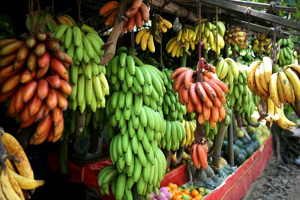 Банан - это фрукт или ягода? интересные факты