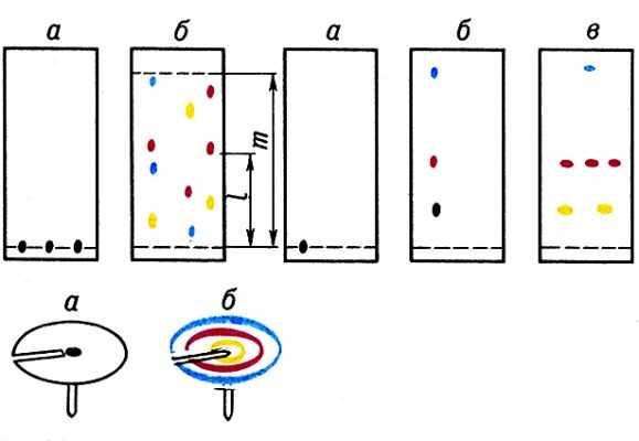Хроматограф - принцип действия (работы), инструкция по эксплуатации - хроматограф.ру