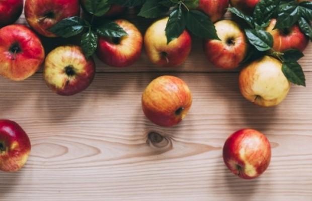 Яблоко: где и как растет фрукт, калорийность, виды, польза и вред, состав и хранение