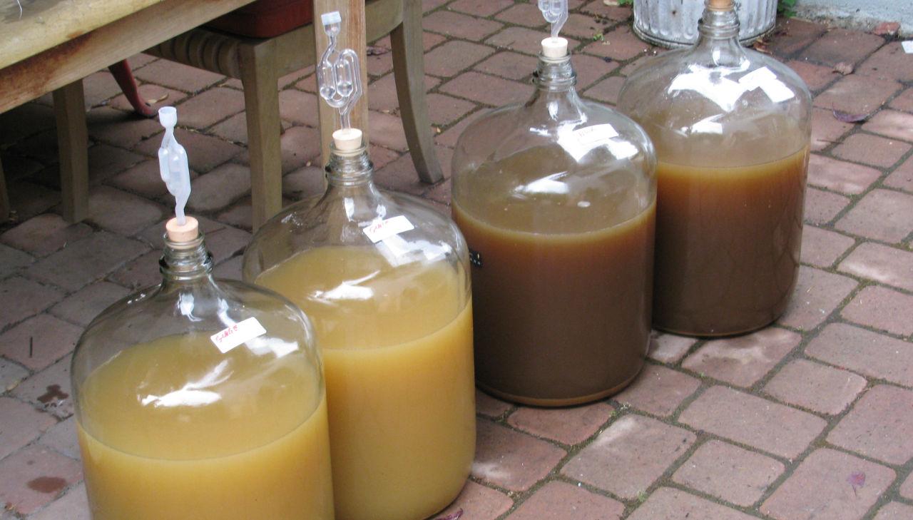 Что такое брага питьевая, из чего состоит, можно ли пить? как сделать вкусную брагу для питья