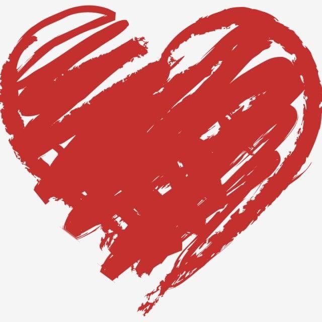 Особенности строения сердца человека