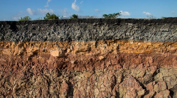 Почвенный профиль: что это такое? строение профиля почвы. из каких слоев он состоит и какой находится внизу? определение и характеристика