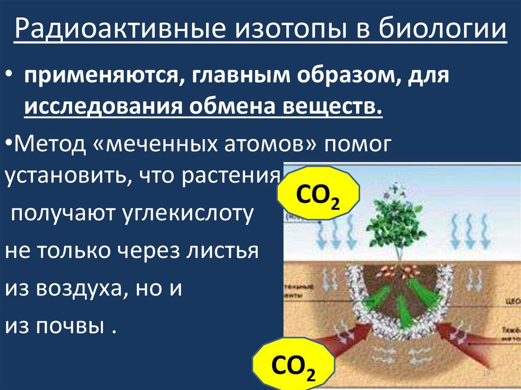 Изотоп • ru.knowledgr.com