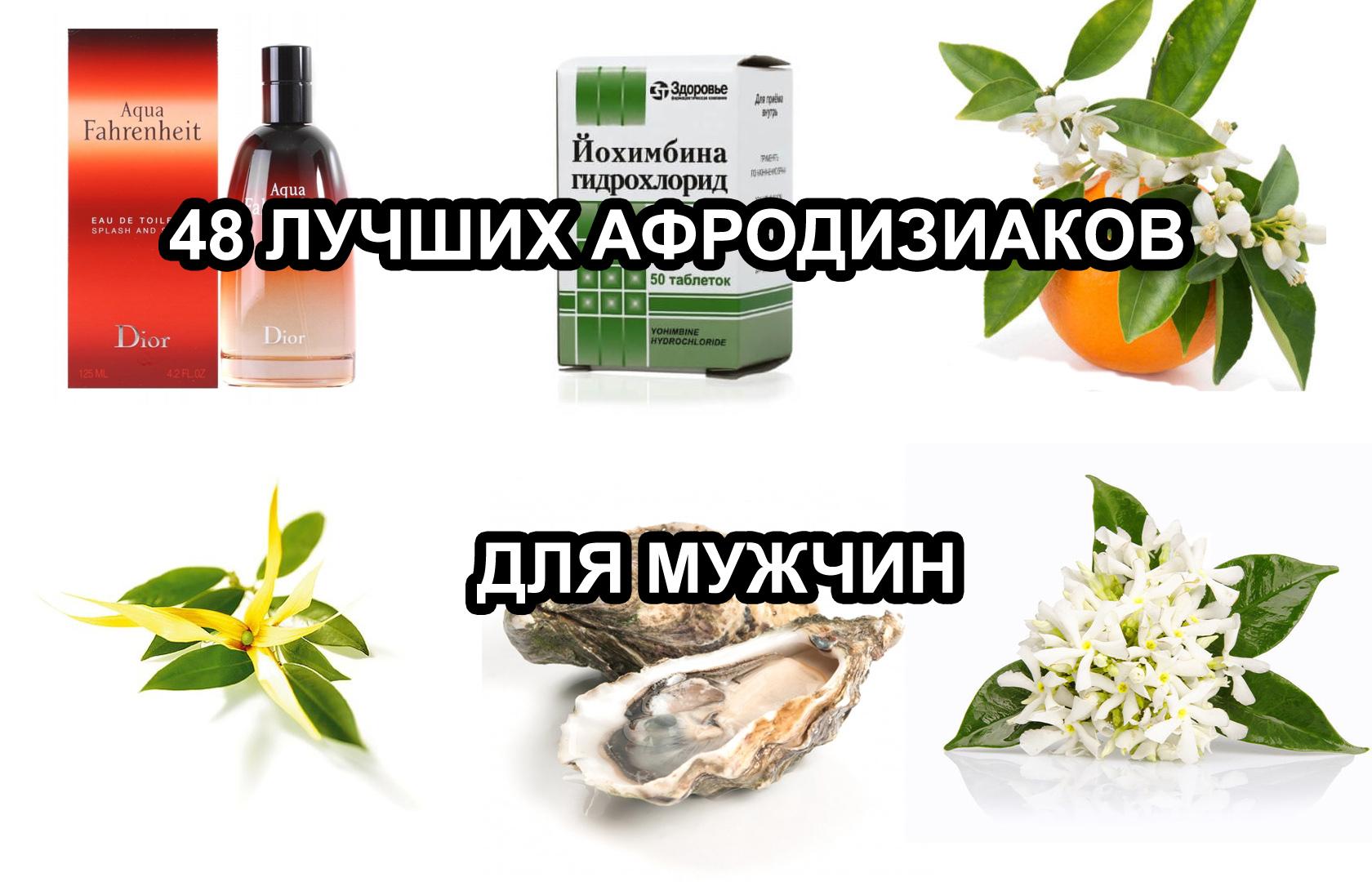 Афродизиак — что это? список продуктов афродизиаков для мужчин и женщин