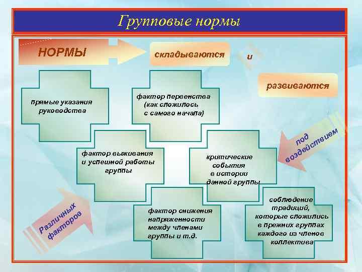 Что такое групповые нормы: определение, требование, классификация и особенности