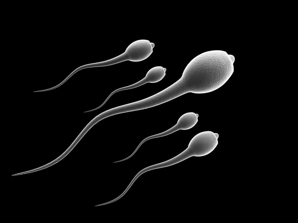 Какая должна быть сперма? - androloginfo.ru
