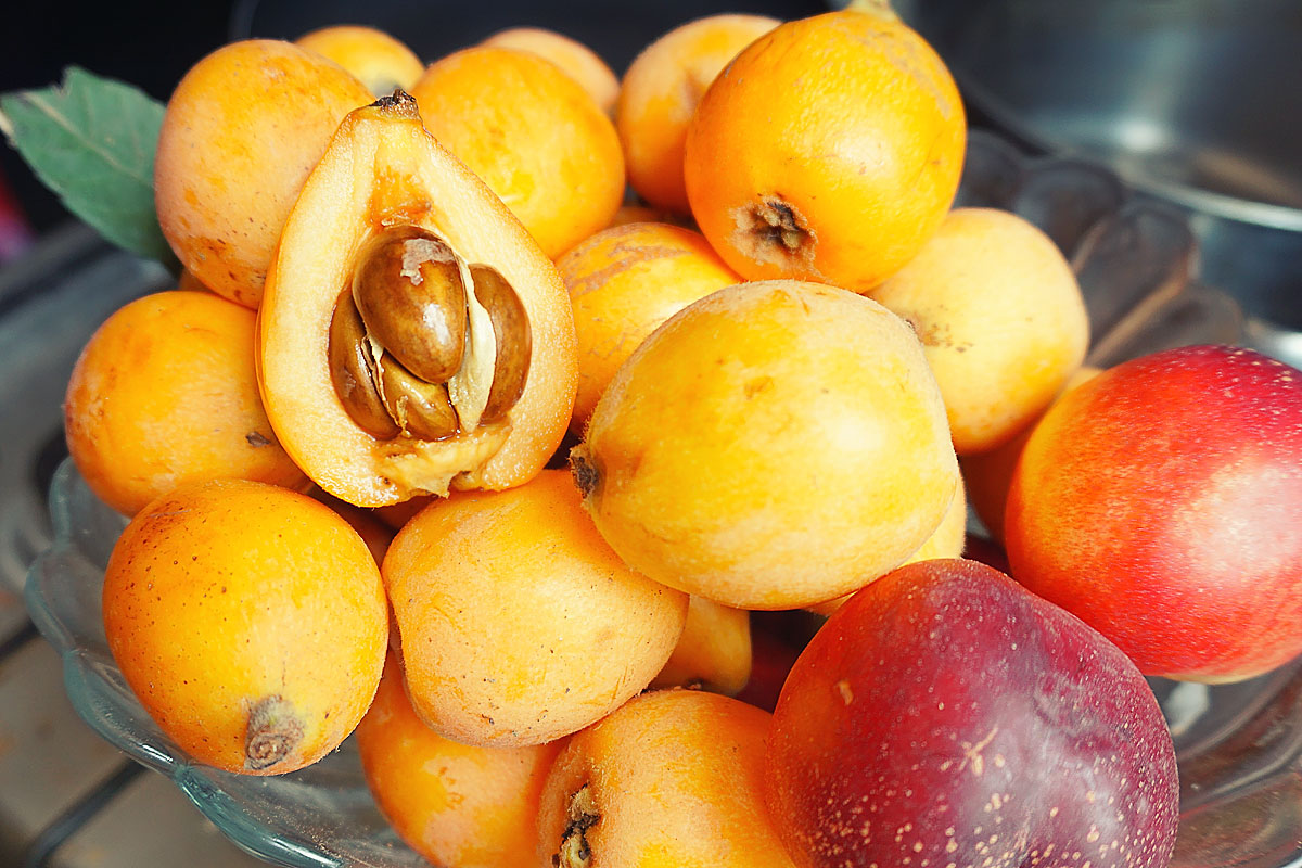 Мушмула - чем полезен этот фрукт и как его правильно употреблять