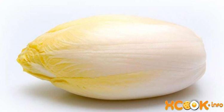 Эндивий (салатный цикорий): описание, состав, применение, польза, вред