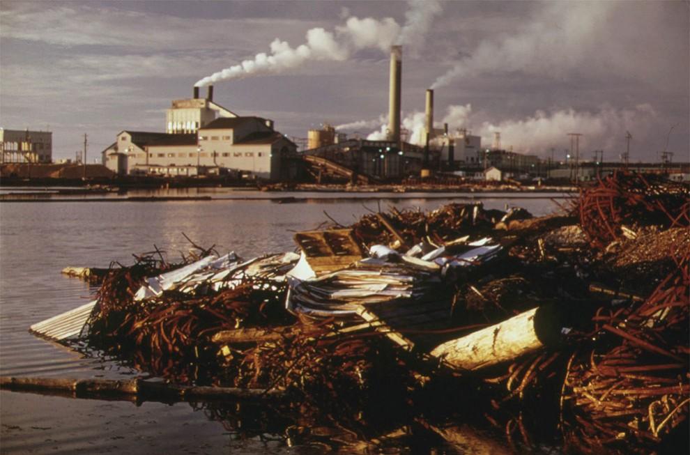 Общее понятие экологического кризиса