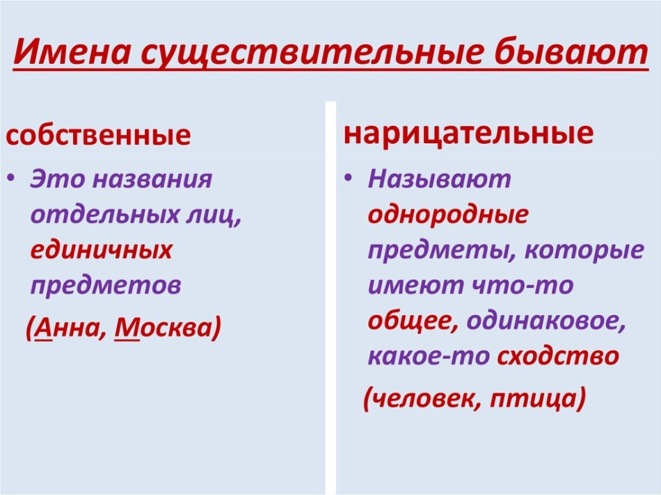 Собственные и нарицательные имена существительные, что это такое в русском языке, примеры предложений, как определить, правило