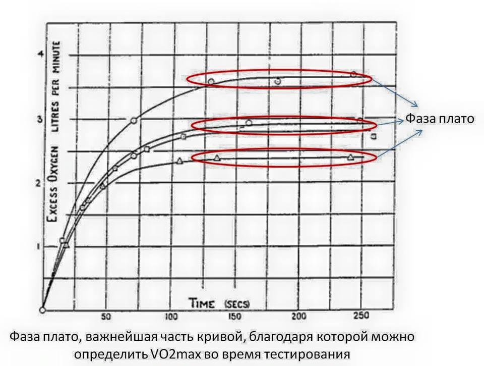 Чем важен показатель мпк (vo2max) и как его повысить