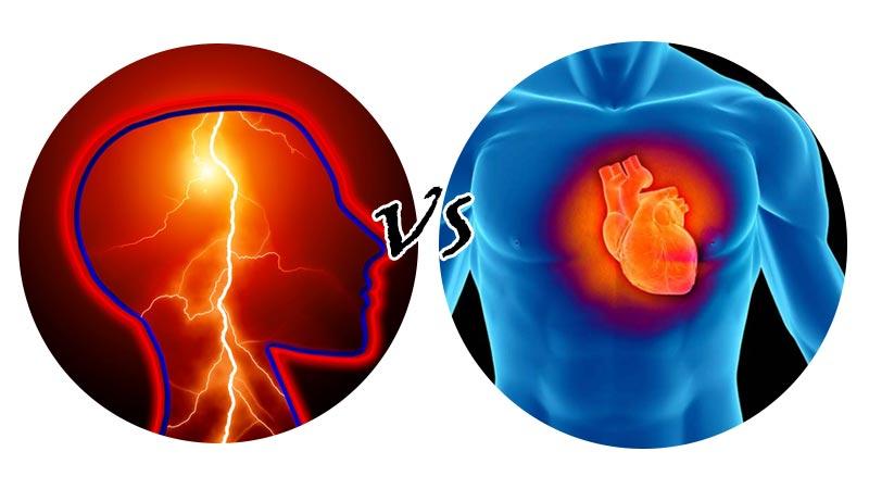 Различия между инсультом и инфарктом