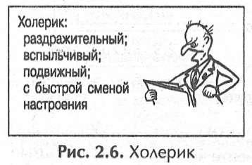 Сангвиник-флегматик – особенности смешанного темперамента