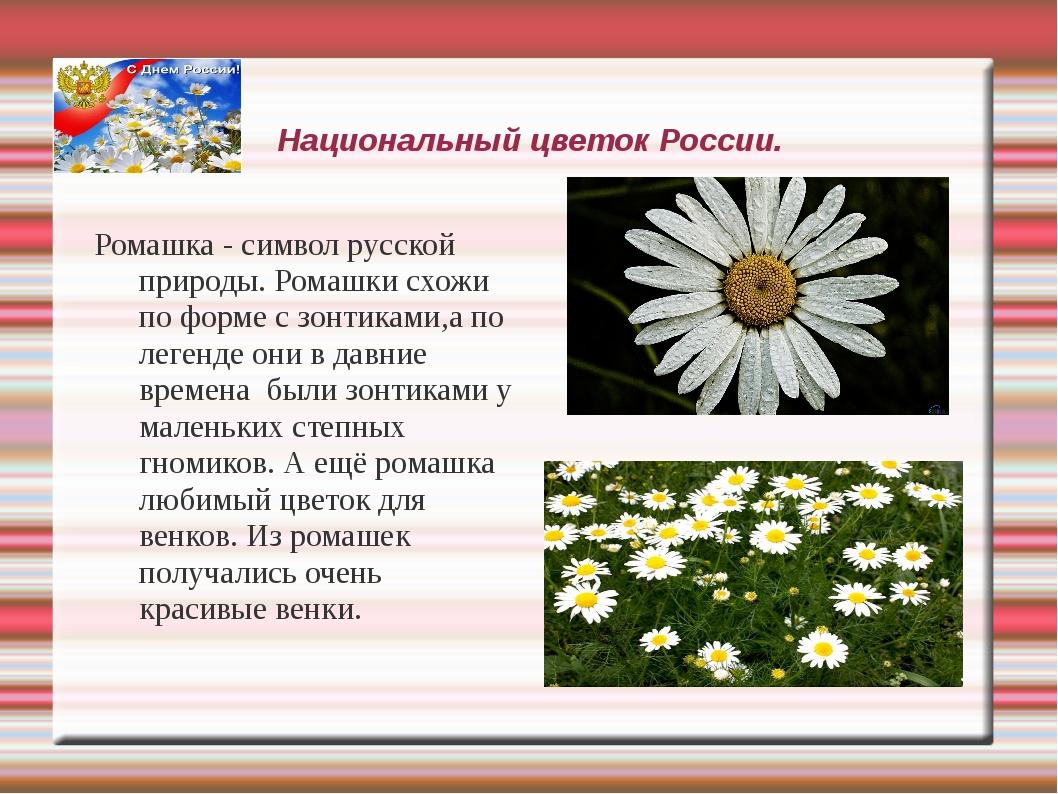 Что такое цветок