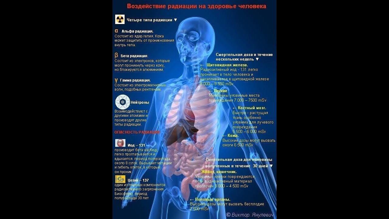 Насколько опасна доза радиации, получаемая при рентгене? | rvdku.ru