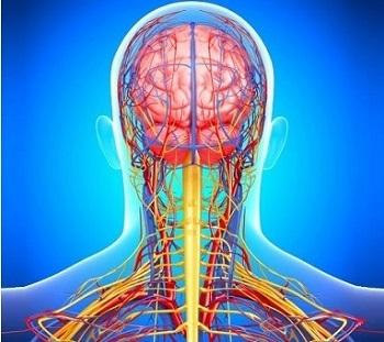 Цервикокраниалгия:  что это такое, причины негативного симптокомплекса и методы лечения