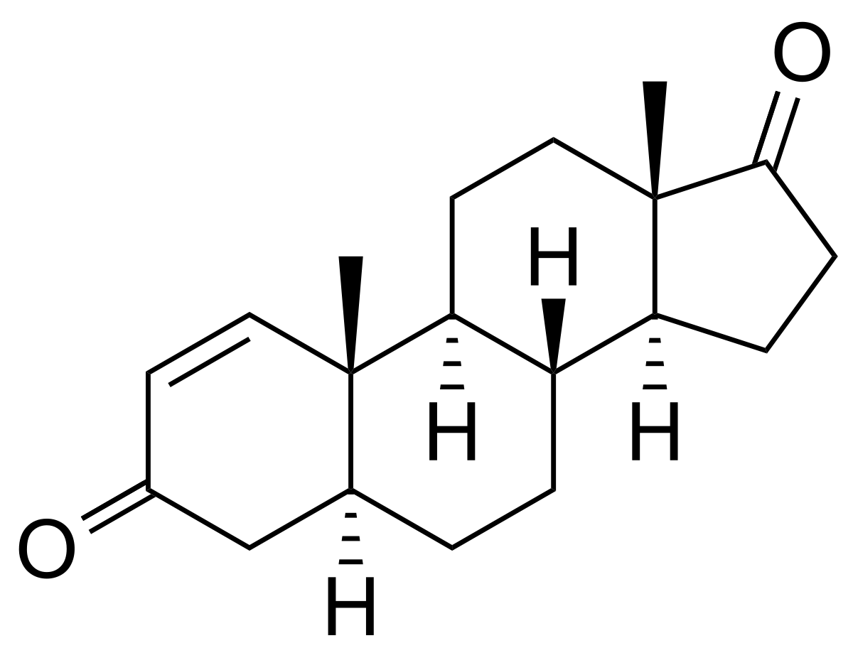 Андростендион — википедия переиздание // wiki 2