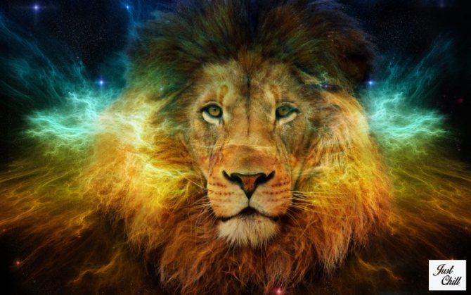 Лев по гороскопу: как выглядит, характер, символ знака зодиака, гороскоп леы