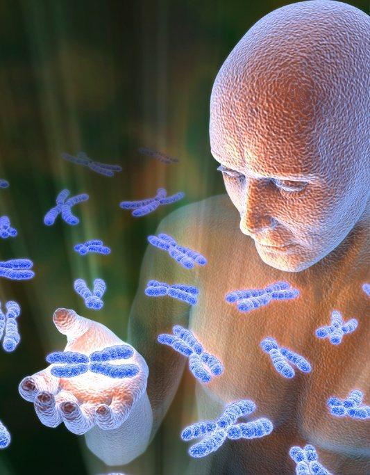 Геном — википедия. что такое геном