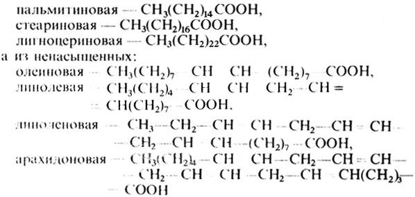 Триглицериды в биохимическом анализе крови: что это обозначает