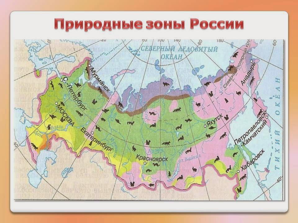 Географическая оболочка земли. природные зоны земли
