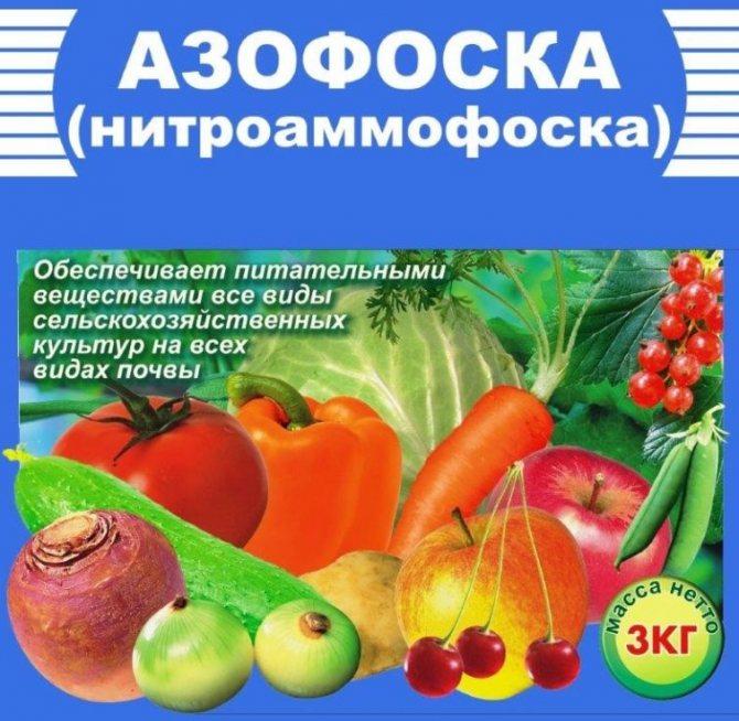 Нитрофоска — особенности применения для различных культур — ботаничка.ru