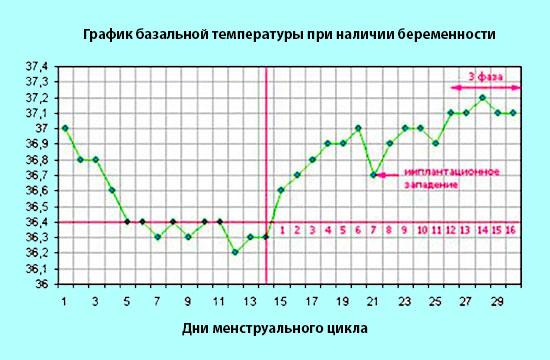 Базальная температура — википедия. что такое базальная температура