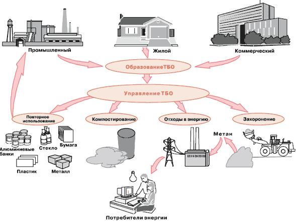 Твердые бытовые отходы: что к ним относится, классификация тбо