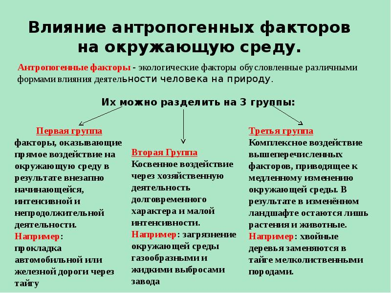 Антропогенные факторы