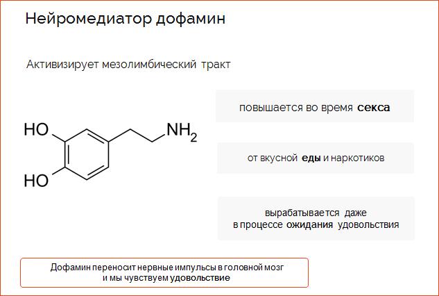 Дофамин. какое его значение в организме человека?