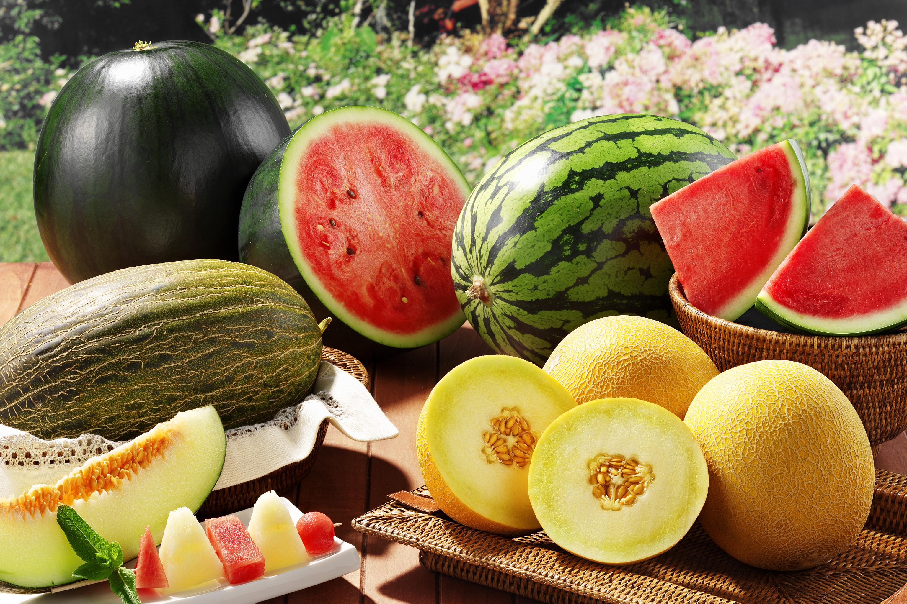 Дыня это ягода или фрукт: полезные свойства, особенности выращивания и советы по выбору места для посадки (125 фото)