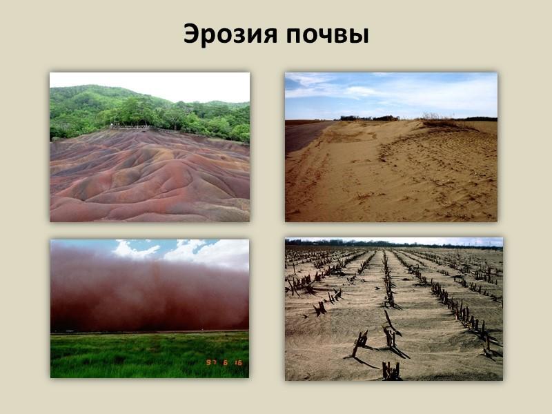 Что такое ветровая эрозия почв? ⋆ «премьер агро» — агропромышленный журнал