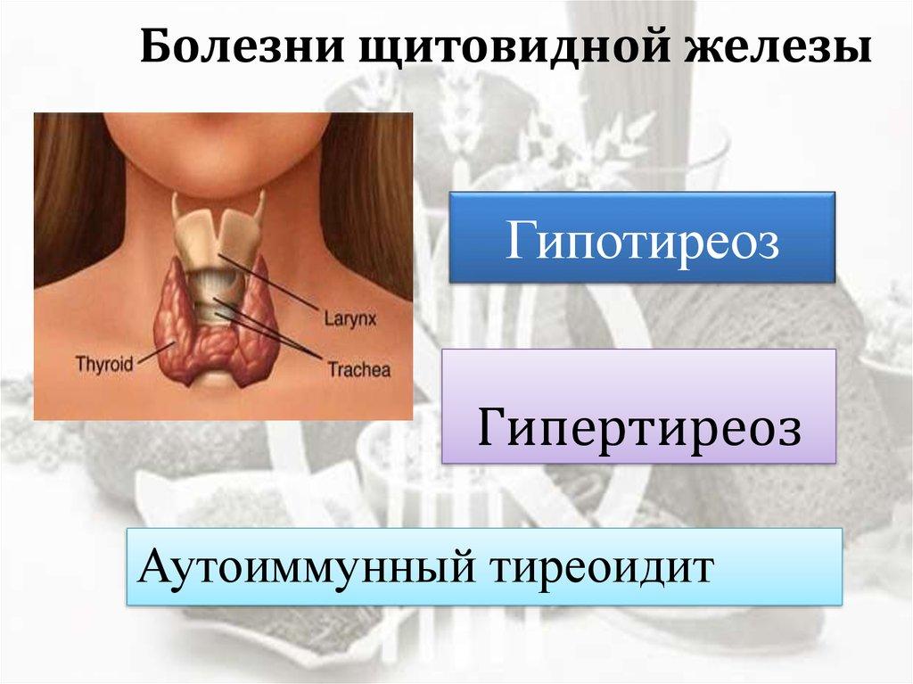 Лечение заболеваний щитовидной железы, фото | pro shchitovidku