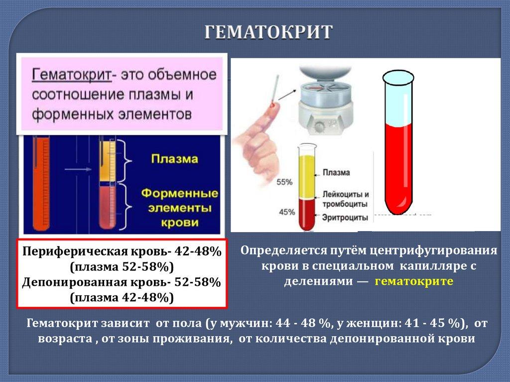 Гематокрит в оак: нормы, причины понижения и повышения