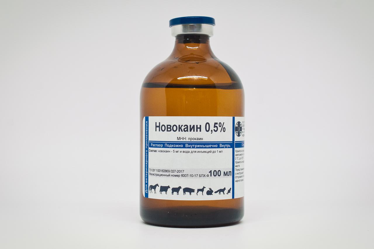 Прокаин: инструкция по применению, цена и отзывы - medside.ru