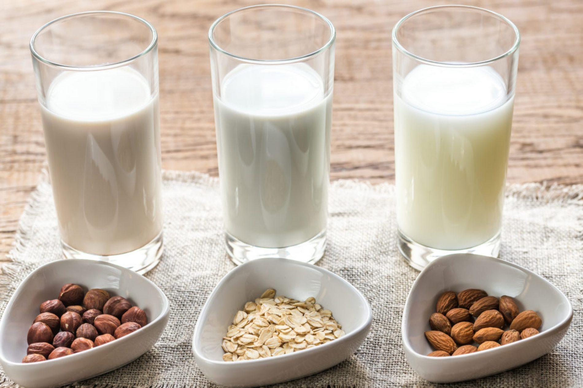 Большой обзор: лучшее растительное молоко и как его сделать дома