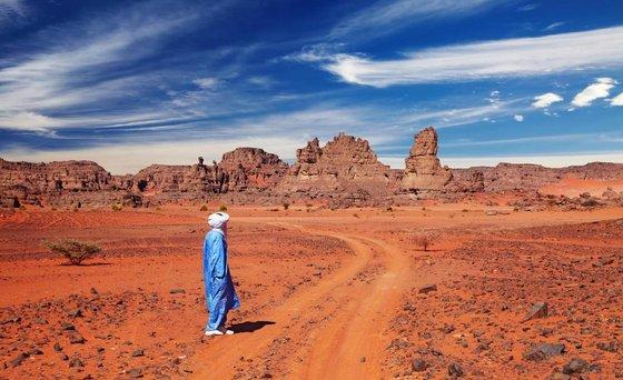 Опустынивание — википедия. что такое опустынивание