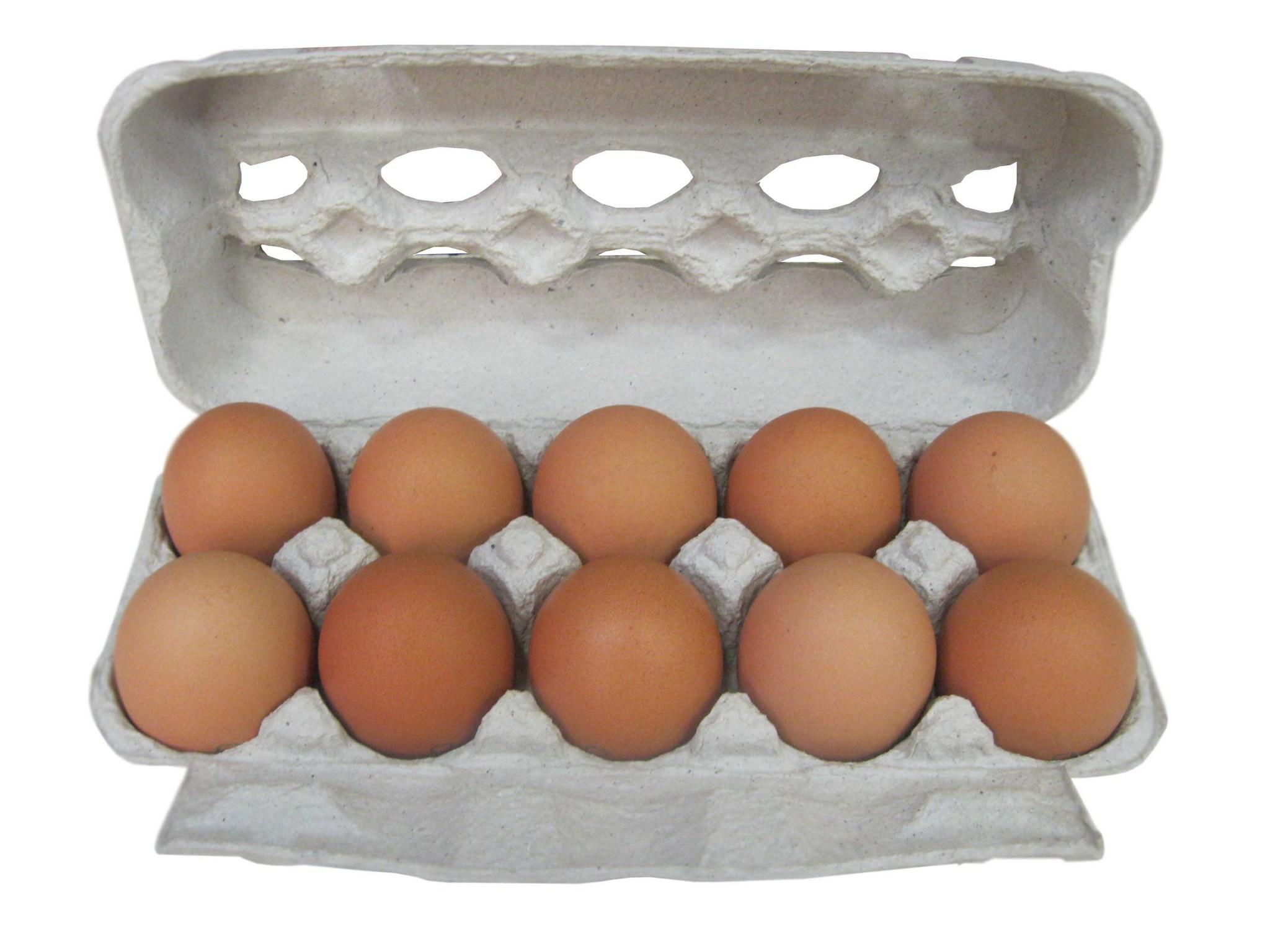 Яйцо — википедия. что такое яйцо