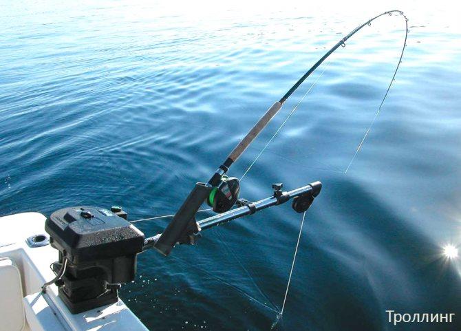 Троллинг. часть 2. - спортивное рыболовство
