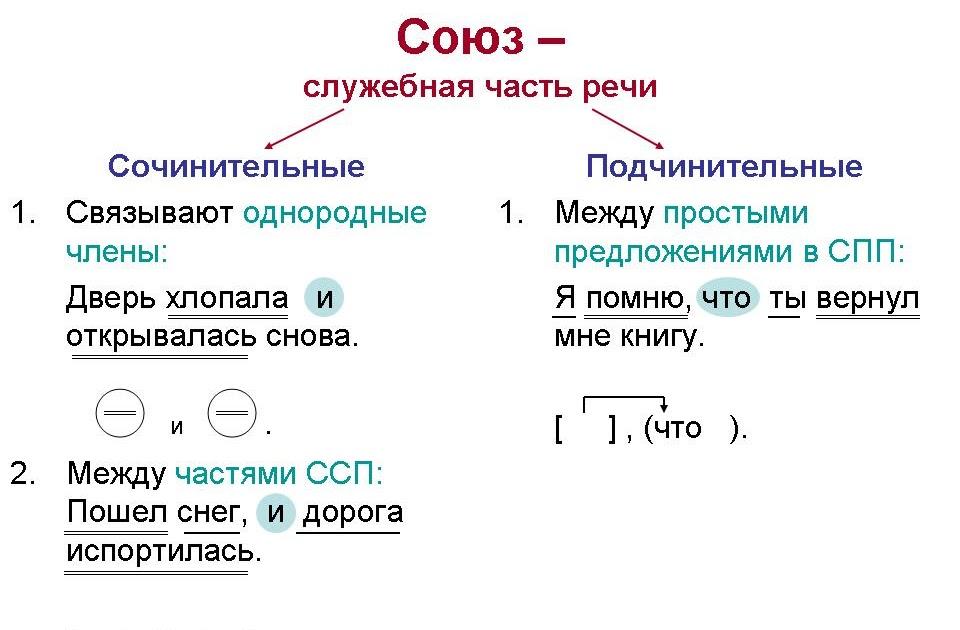 Сочинительные и подчинительные союзы – таблица с видами, правила и примеры (7 класс, русский зяык)