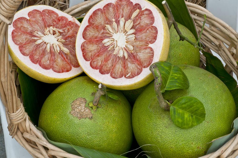 Фрукт помело - полезные свойства, состав и калорийность, противопоказания
