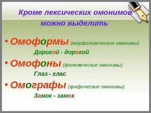 Омонимы - это... 50 примеров омонимов