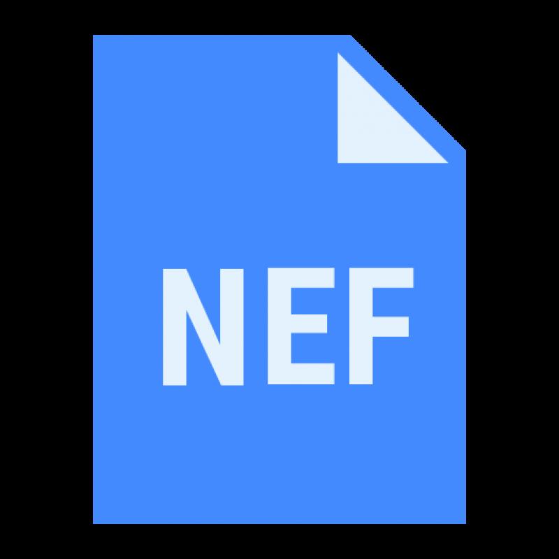 Архитектурный справочник: что такое неф?