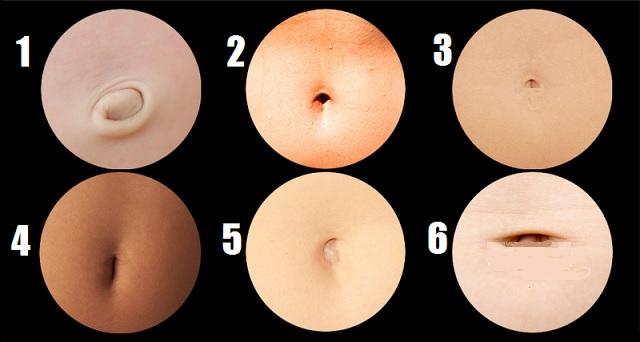 Анатомия пупка человека – информация: