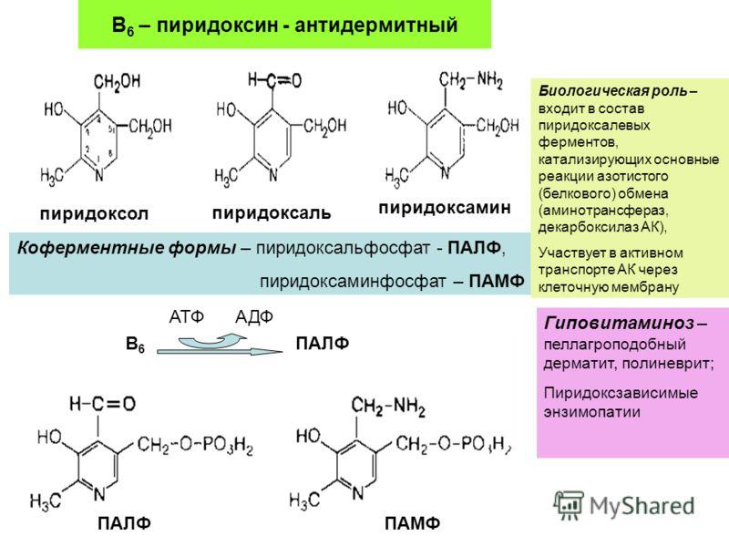 Инструкция по применению пиридоксина
