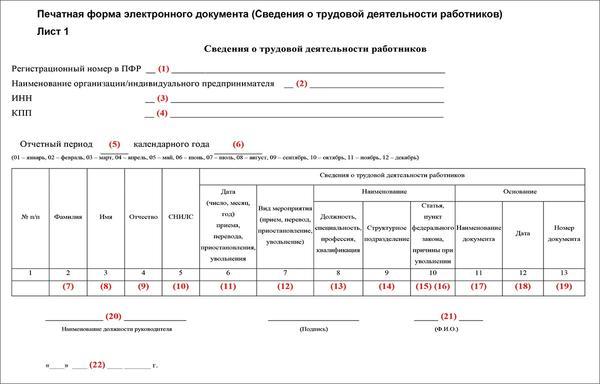 Виды налоговых деклараций. что такое налоговая декларация